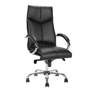 Leather & PU Office Chair 255CC