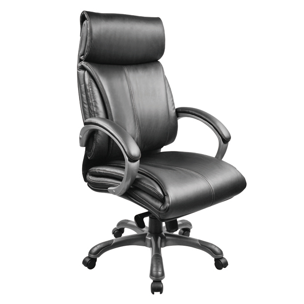 Leather & PU Office Chair 201