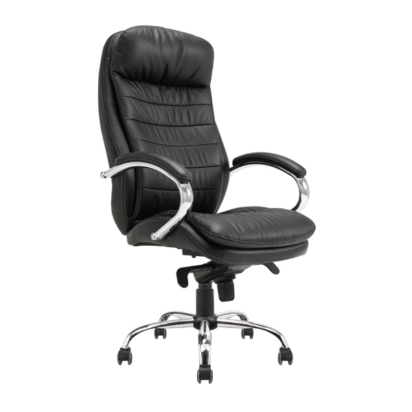 Leather & PU Office Chair 205CC